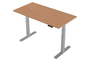 Price Point Height Adjustable Desk