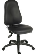 Ergo Comfort Executive Chair - No Arms