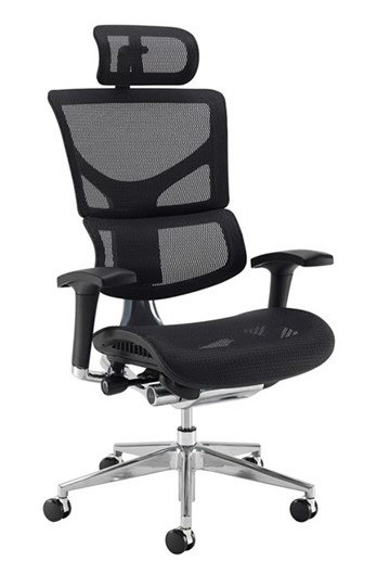 Dynamo Ergo Mesh Office Chair