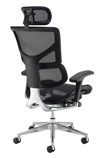 Dynamo Ergo Mesh Office Chair