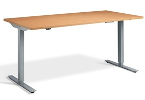Edge Rectangular Height Adjustable Desk