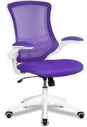 Ergo Mesh Chair
