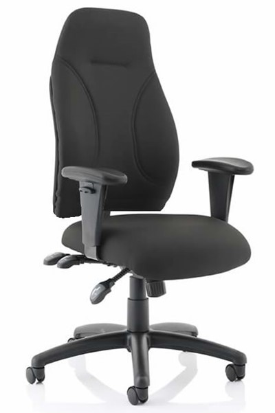 Esme Ergonomic Fabric Office Chair