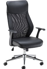 Ergonomis Mesh Office Chair