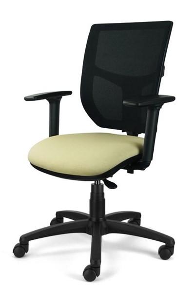 Ergo Supreme Mesh Office Chair