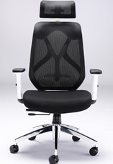 Maldini High Back Mesh Chair