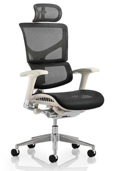 Ergo Dynamic Mesh Executive Office Chair