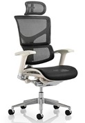 Ergo Dynamic Mesh Chair