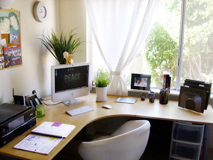 decorate an office. Desk Plants Decorate An Office A