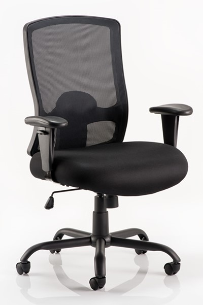 Atlas Bariatric Chair