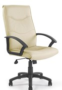 Molton Leather Managers Chair
